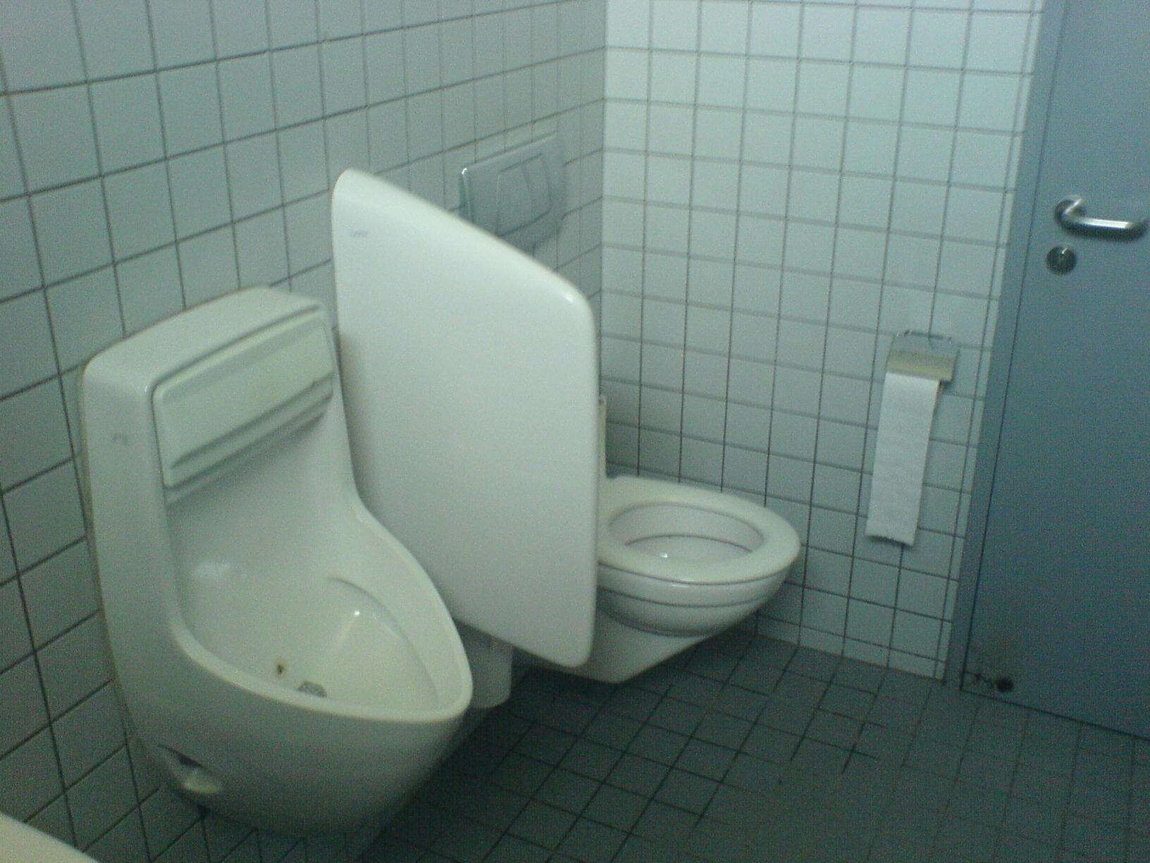 ein unm gliches wc gerry blogt. Black Bedroom Furniture Sets. Home Design Ideas
