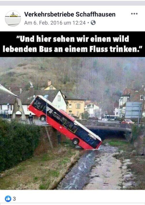 vbsh bus